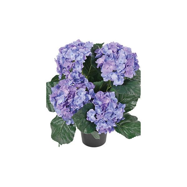 Hortensia 37 cm, blå