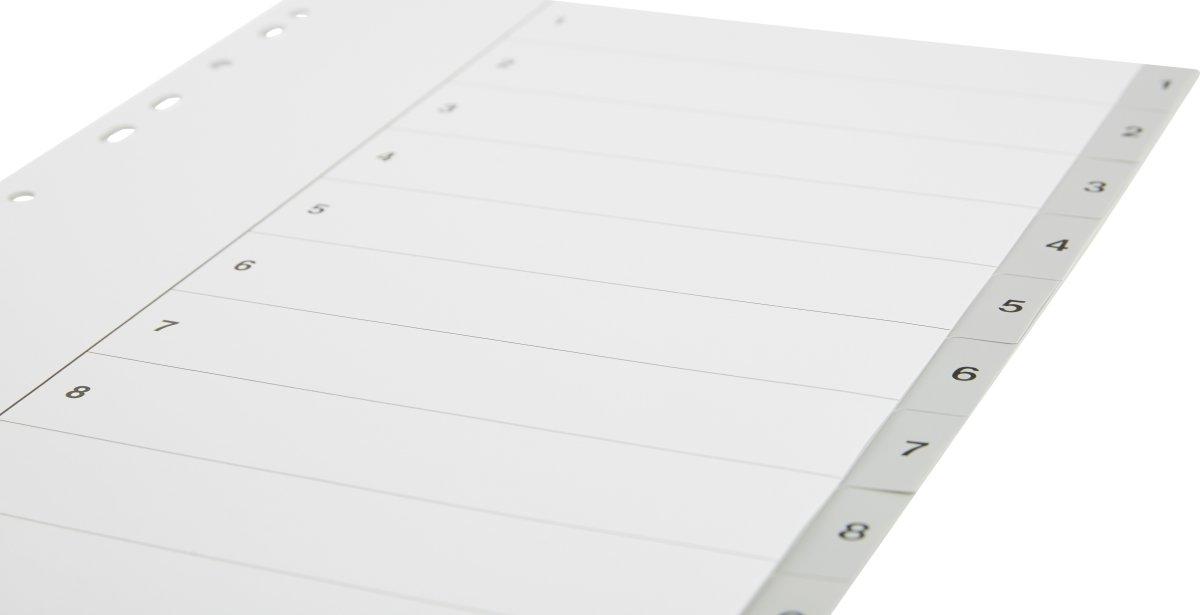 Budget registre A4, 1-10, plast