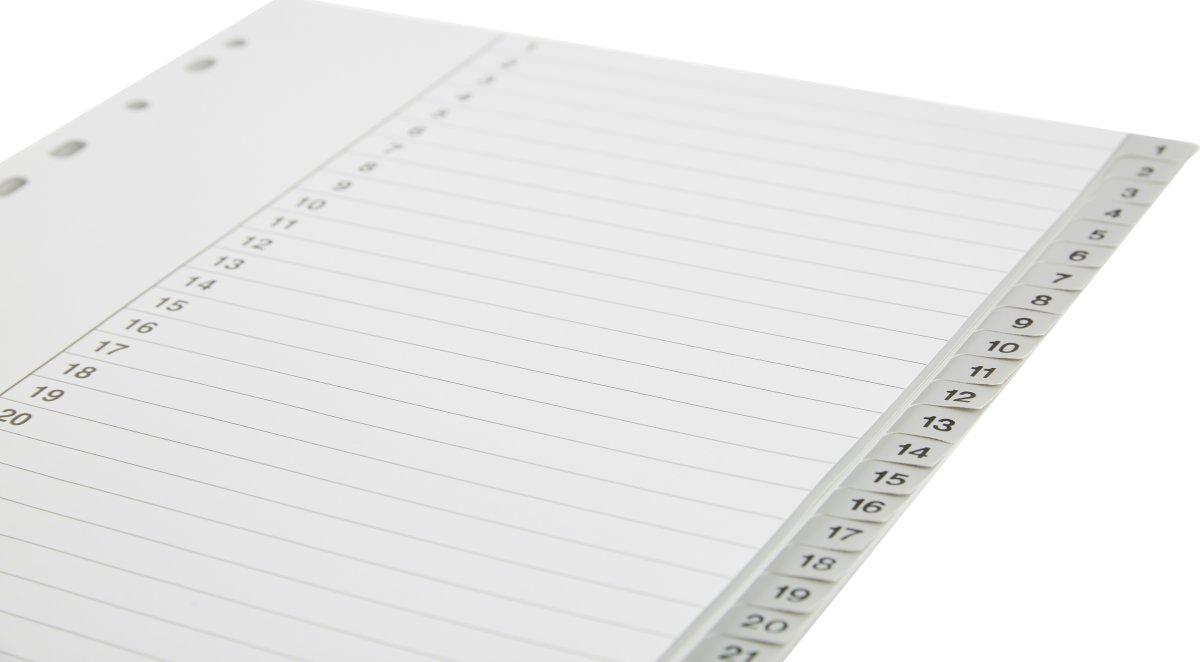 Budget registre A4, 1-31, plast