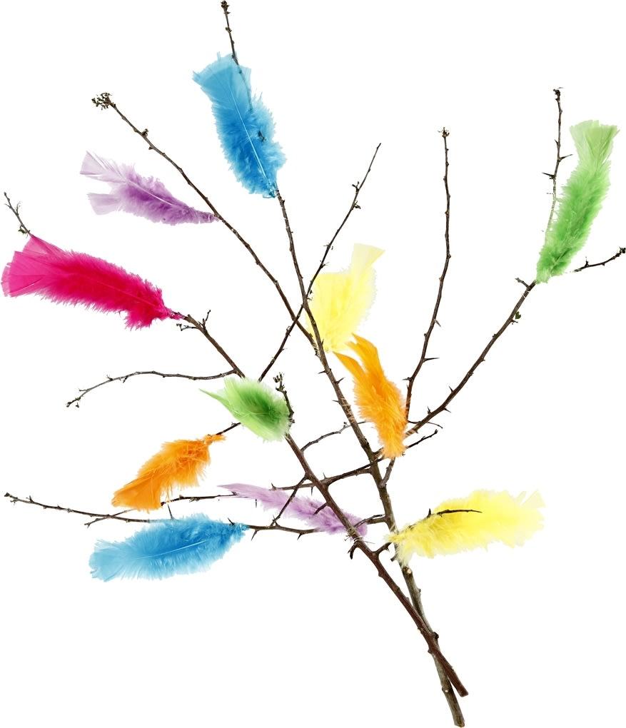 Pyntedun 11-17 cm, 18 bundter i 6 farver