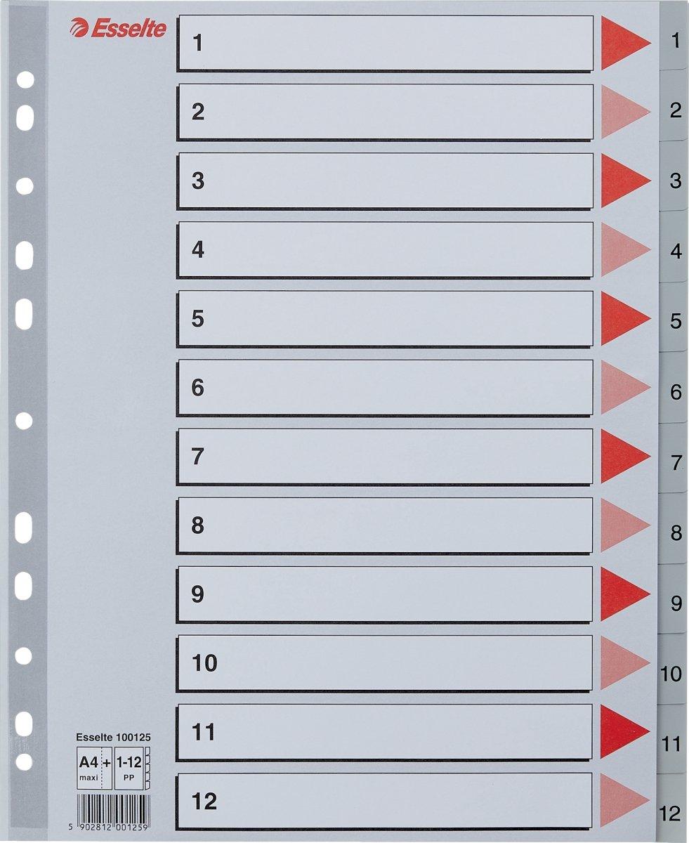 Esselte Maxi register A4, 1-12, grå